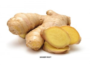 GINGER ROOT PICTURE FOR OU, 10 MAY 2017