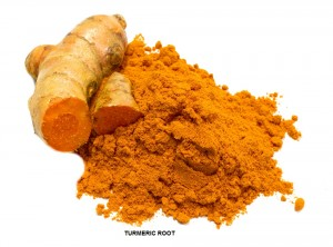 TURMERIC ROOT PICTURE FOR OU, 10 MAY 2017