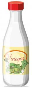 36769855 - illustration of a bottle of vinegar